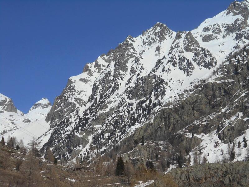 Alpi sauvage en Gordolasque Cayre_78