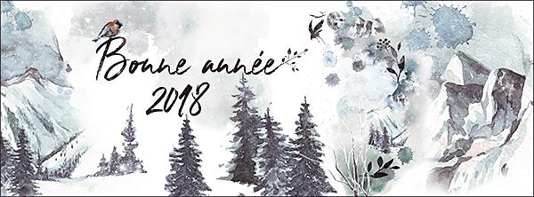 Excellente année 2018 ! - Page 2 Timeli10