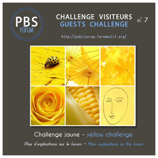 Challenge Visiteurs n°2018 - 7 - Jaune Visite15