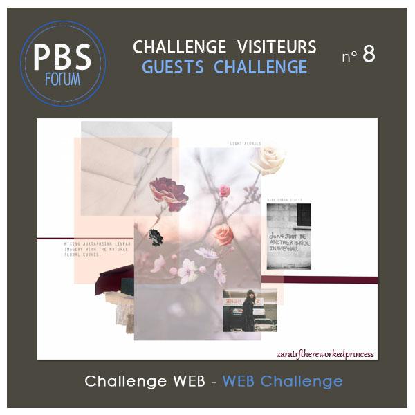 Challenge VISITEURS n° 8 - WEB Visite16