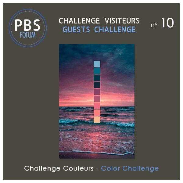 Challenge VISITEURS n°10 - Couleurs Visite18