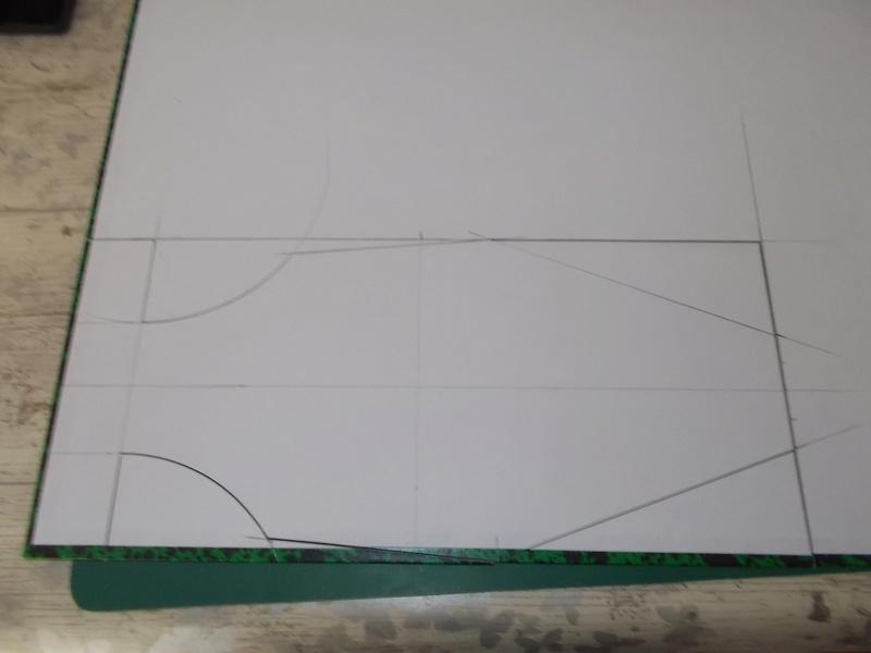 SHELBY ANTIGRAV IONIC RACER Dscn6412