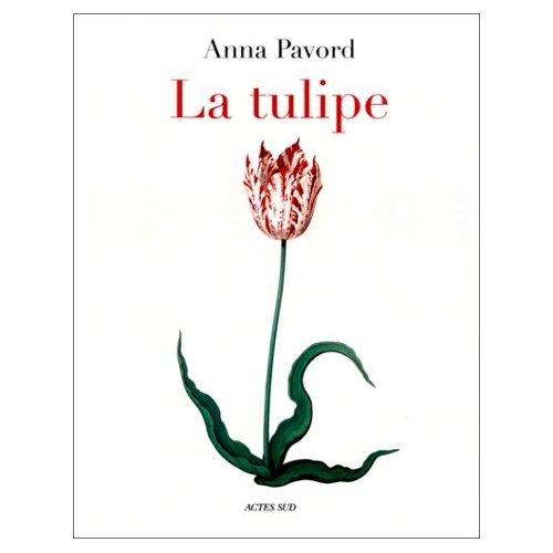 La Tulipe, d'Anna Pavord 41zf1a10