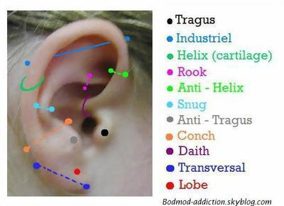 Piercings/tatouages? - Page 2 13092110