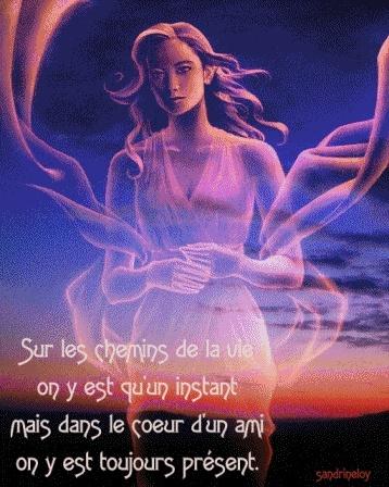 bonjour - Page 13 08021810