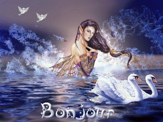 bonjour 1ufhs911