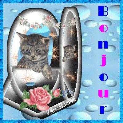 bonjour - Page 19 21219510