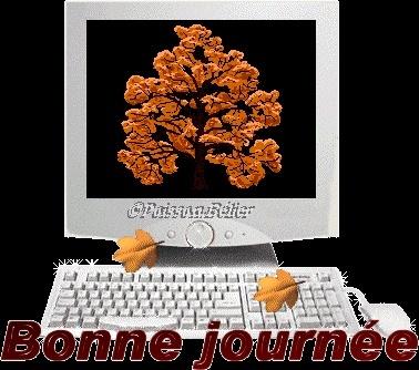 bonjour - Page 2 Defi2011