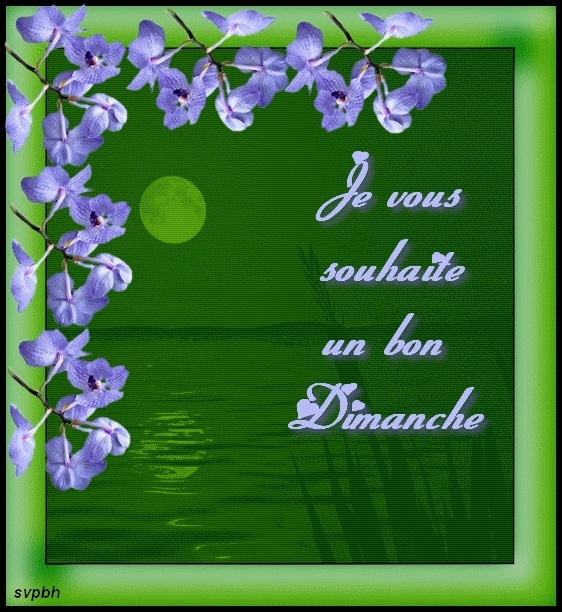 bonjour - Page 20 Svpbd10