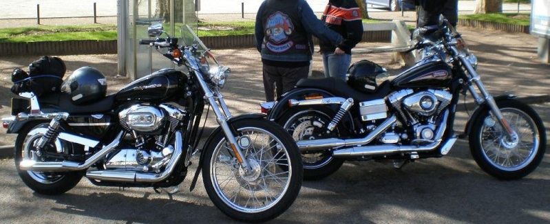 combien sommes nous en 1200 Sportster sur Passion-Harley - Page 2 Nosbac10
