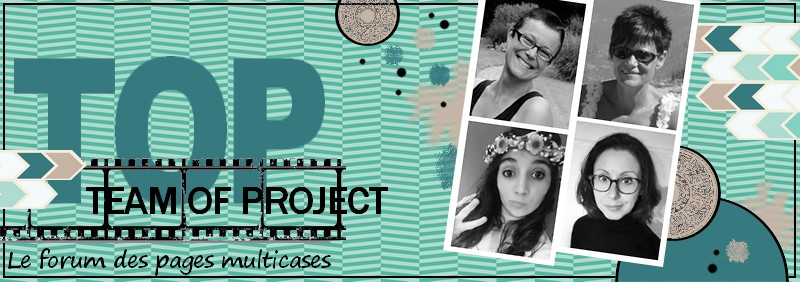 Team of Project