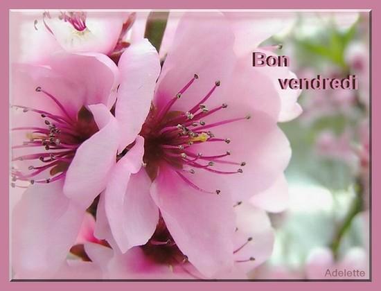 VENDREDI 20 AVRIL 2018 Sainte ODETTE 2550ba10