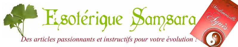 Lecture en étoile avec le Grand jeu de Mademoiselle Agnès Le_gra10