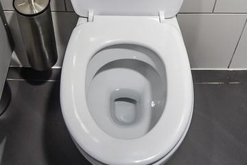 Le calcaire et les toilettes... W_c_10