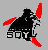 FPV RACING SQY