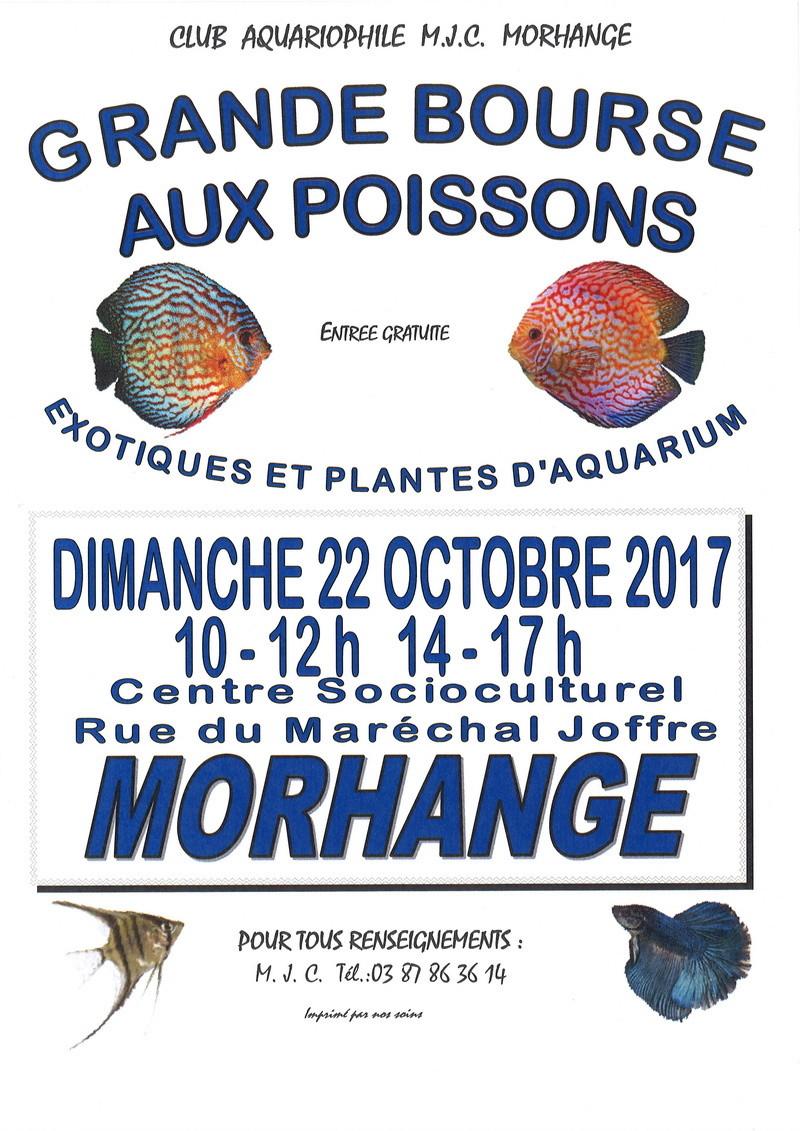 Bourse Morhange (57) - 22 octobre 2017 Affich10