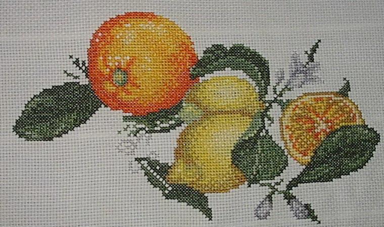 petite galerie de josiane Fruit10