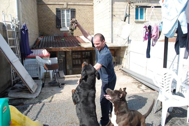 Présentation  de mes chiens - Page 2 Dsc_4911