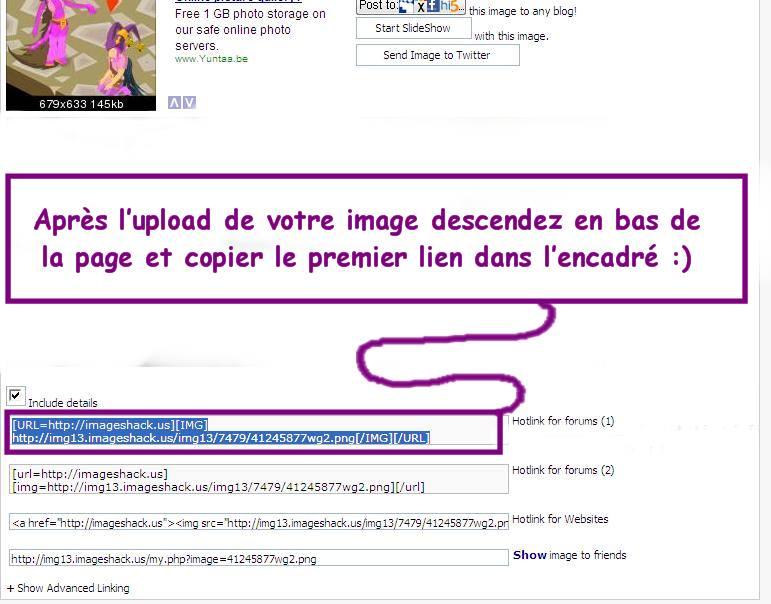 Comment insérer une image dans vos messages avec ImageShack 222_bi10