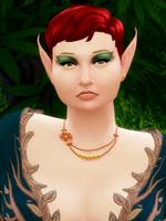 Les portraits du royaume Avatar10