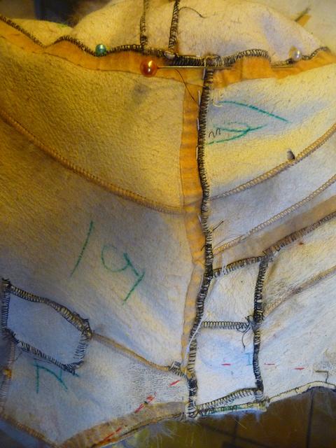 La veste en lapin de Lili P1430914