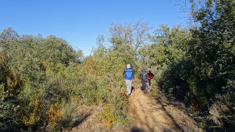 et nous n'y sommes pas allés.. chemin perdu dans les broussailles... Esparr31