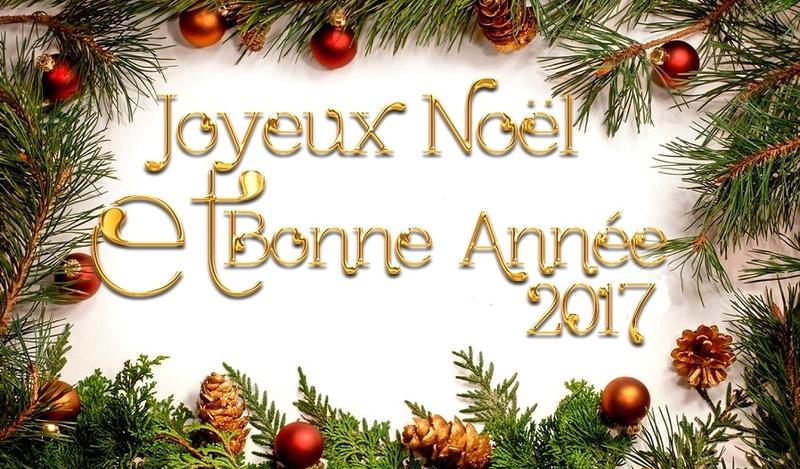 [Infos des Administrateurs]  Nos meilleurs voeux pour 2018 !!! Image-10