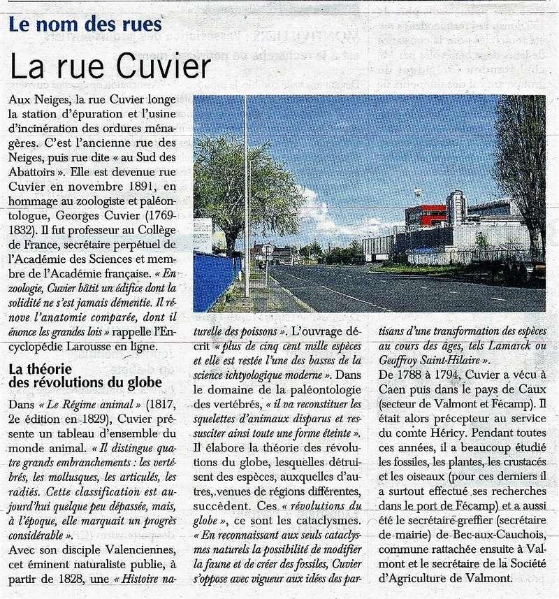 Havre - Le Havre - Rue Cuvier (Neiges) 2016-128
