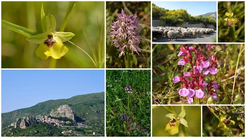 La Sicile coté mer Ionienne du 25 avril au 1 mai 23_et_10