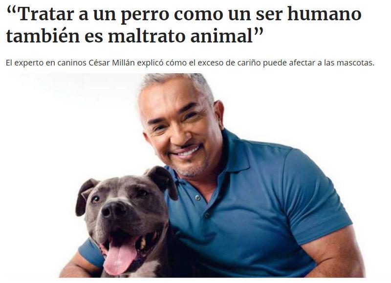 TRATAR A LOS ANIMALES COMO HUMANOS ES MALTRATO ANIMAL Cesar_10