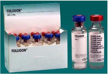 FOLLIGON --- HORMONA ESTIMULANTE  PROBLEMAS DE REPRODUCCION Follig10