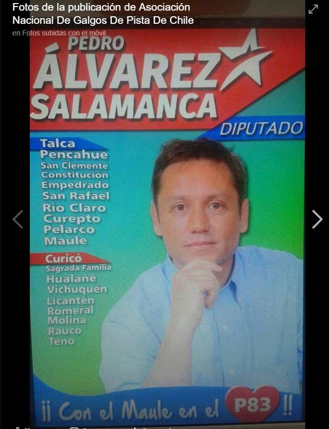 POLÍTICOS QUE APOYAN A GALGUEROS Y LAS TRADICIONES DE CHILE Salamc11