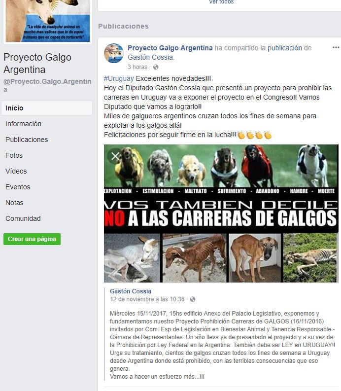 URUGUAY SE EXPONE PROHIBICIÓN DE CARRERAS DE GALGOS 15/11/17 Urugua10