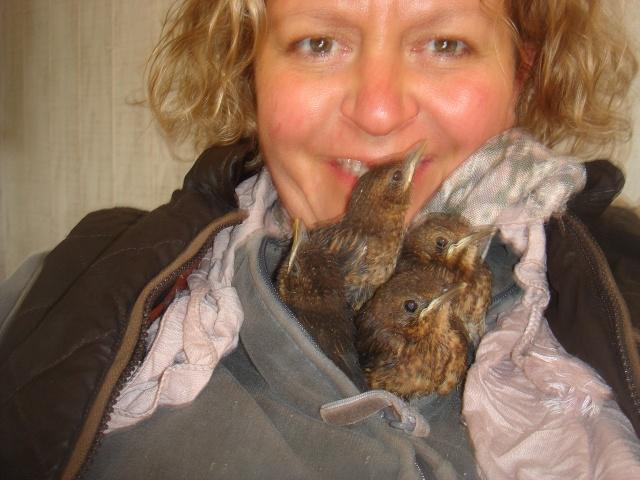 HELP!!!!une ruche sur un toit...........la saga! - Page 3 Divers10