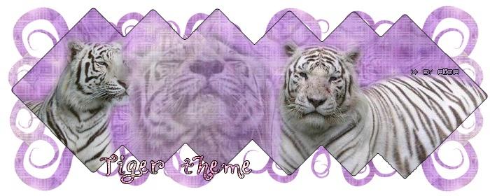 Aëzia Tigre_11