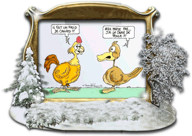 Aurons nous un véritable hiver cette année ? On en parle... Froid_10