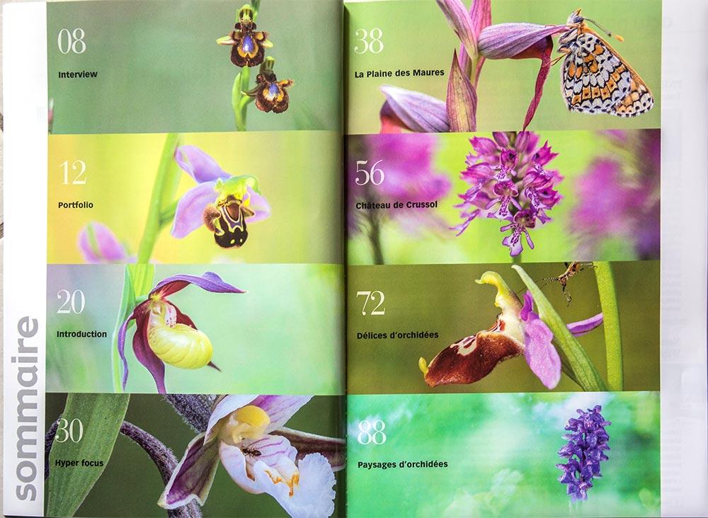 Image & Nature spécial orchidées N° 22 Image_11
