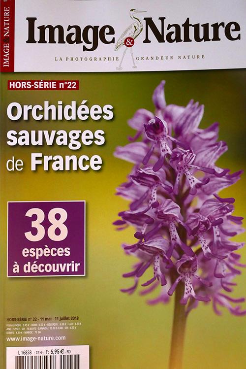 Image & Nature spécial orchidées N° 22 Images10