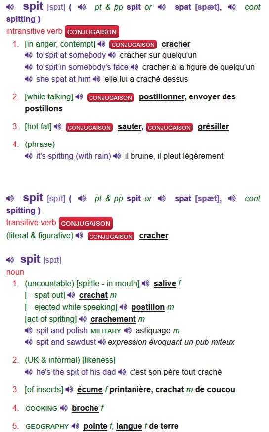 Orchis sureau pourpre bizare Spit_b10