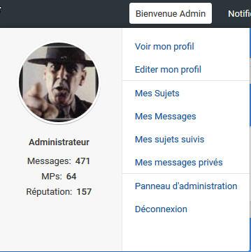 [MODERNBB] Afficher l'id/ami et brouillon dans le Welcome de la toolbar 146