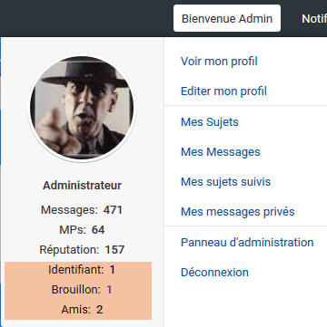 [MODERNBB] Afficher l'id/ami et brouillon dans le Welcome de la toolbar 224