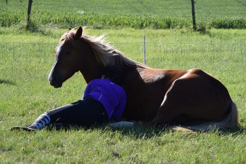 """ON VOTE Concours photos """"Nos chevaux et la tendresse"""" 13064710"""