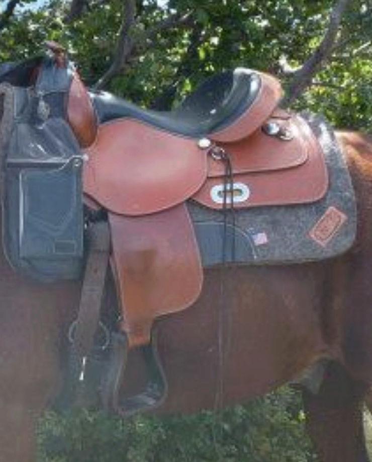 Selle à vendre western Captur10