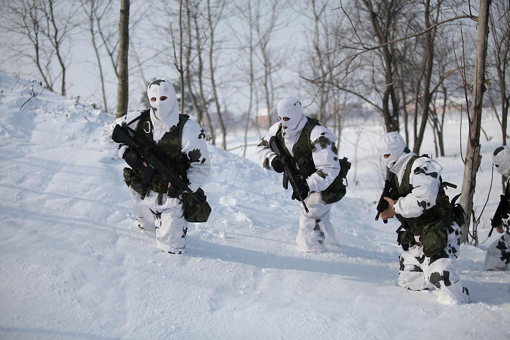 snow pattern 10-310