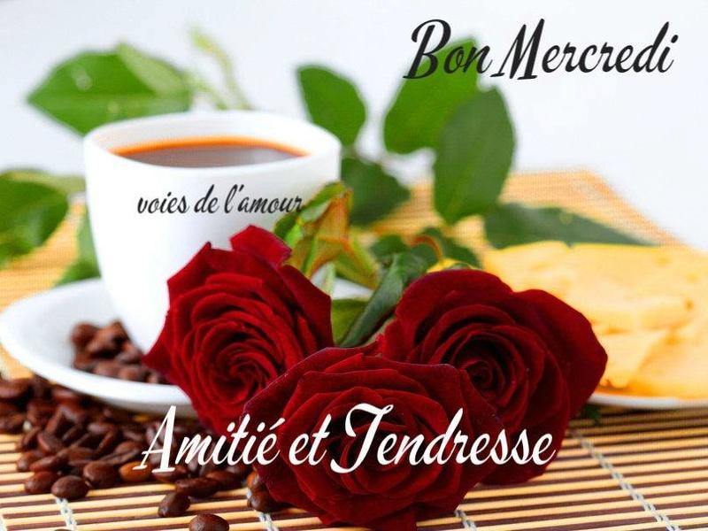 A la rencontre du rire et de l'amitié - Portail Mercre10