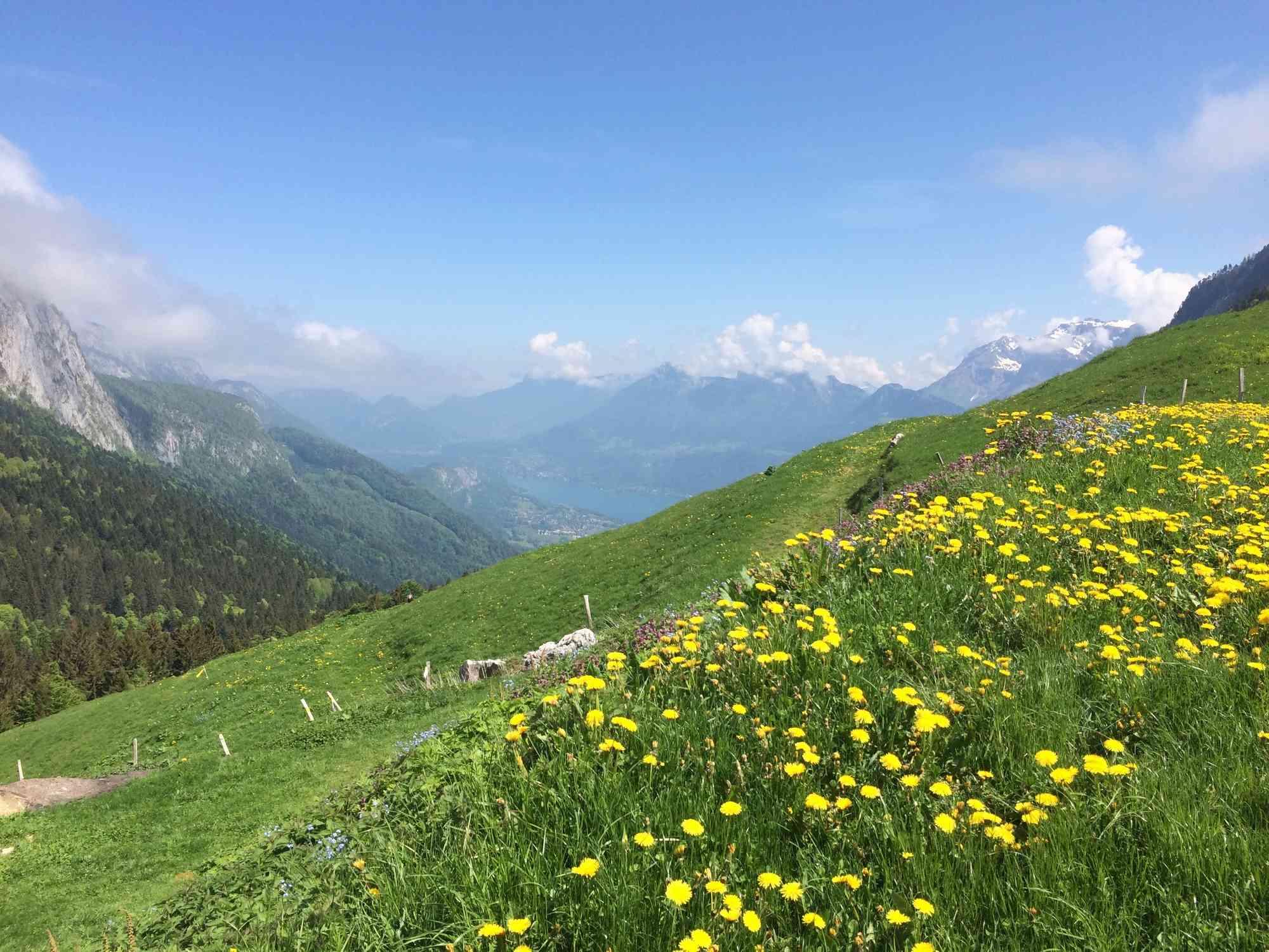 Petites balades en Rhône-Alpes - Page 2 Bellec10