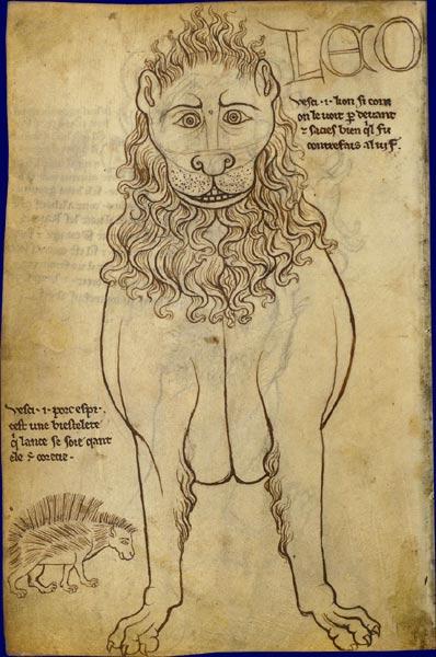 Le lion Lion1210