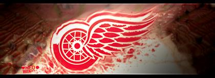 Detroit Red Wings Pré-Saison 2 D14d0e10