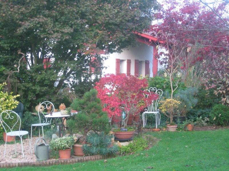 Couleurs d'automne, petit moment d'émerveillement Sorton44