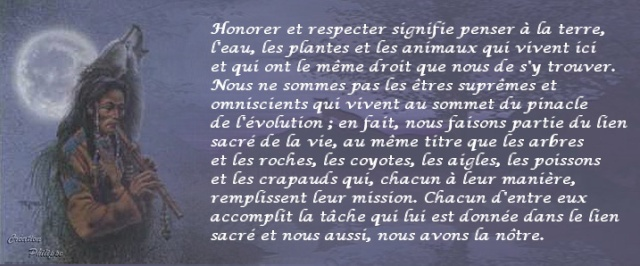 pensée Navaro . 10-06-10